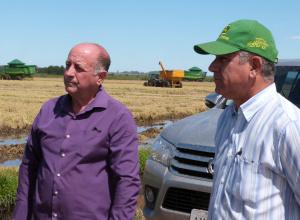 Prefeito de Dilermando de Aguiar acompanha o início da colheira de arroz no município